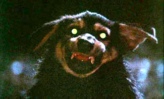 Zoltan, Hound of Dracula